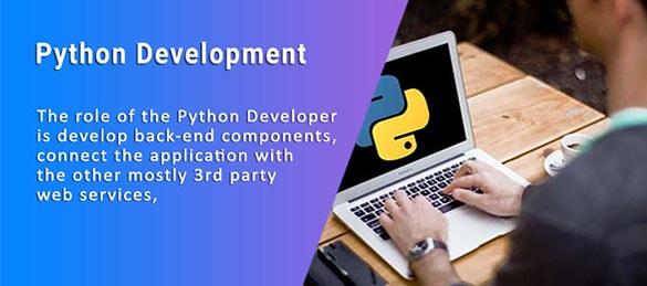 Online Python Videos